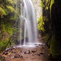 Waterval Los Tilos, La Palma Spanje