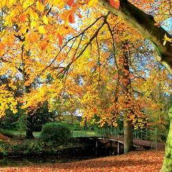 Herfst bij Ramswoerthe