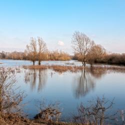 Hoog Water (Meinerswijk te Arnhem)
