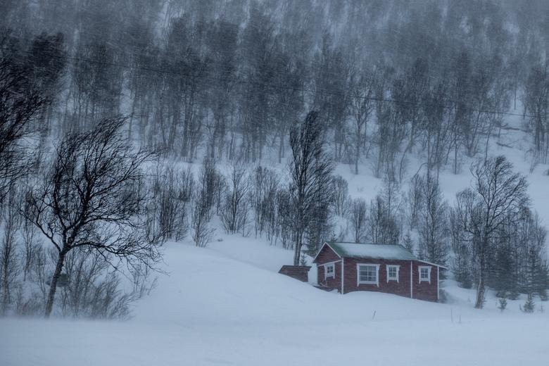 Beter binnen blijven! - Een korte maar hevige sneeuwstorm op Senja in Noorwegen.
