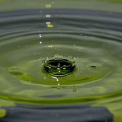 waterkroon 2