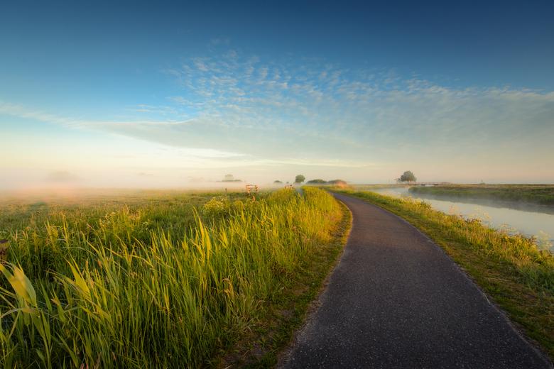 Green, gold and misty morning - Een mistige ochtend, een goud zonnetje en een laag mist boven de weilanden. Goedemorgen! Een fijne Hollandse plaat wat
