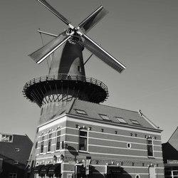 Café De Dicky's en molen Kijck Over Den Dijck