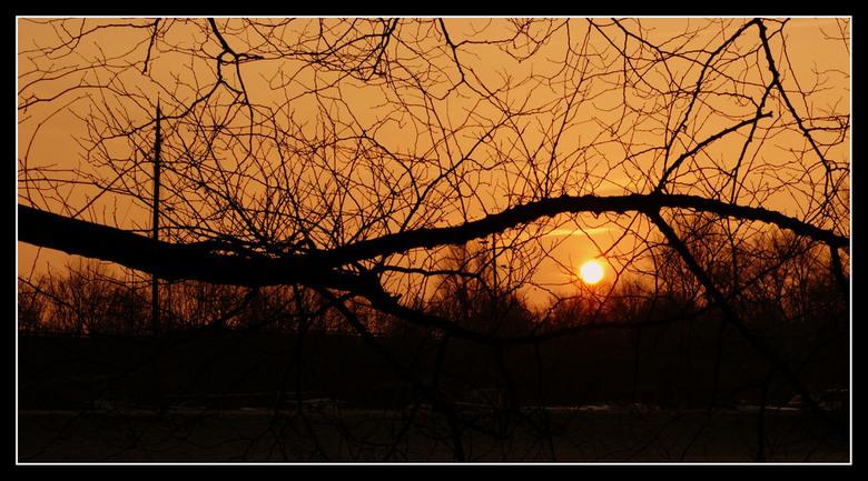 """Coming up.... - Eh....deze foto heeft een naamsverandering ondergaan. De zon komt hier nl op...jaja..<img  src=""""/images/smileys/smile.png""""/> Was in de"""