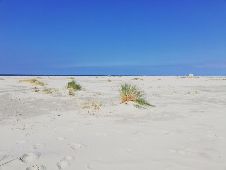 Terschelling - Deze foto heb ik genomen op 21 augustus jl. tussen West aan Zee en Midsland. <br /> We zaten daar helemaal alleen. Alleen onze voetsta