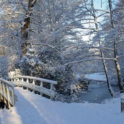 Winter wonder bridge