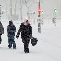 Sneeuwstorm in de Stad