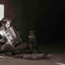 music on the street of Lisbon