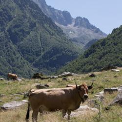 Pyreneeën - Frankrijk