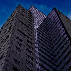 Purple Concrete