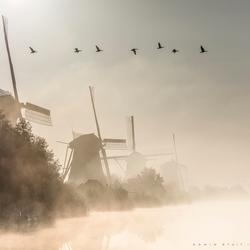 Hollandse ganzenvlucht