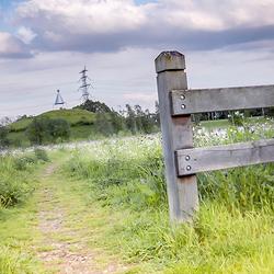 Hekje en een pad