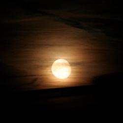 Opkomst maan