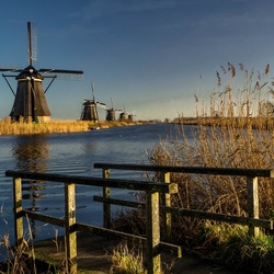Kinderdijk on a cold clear day