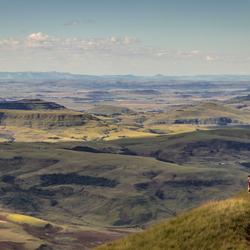 Uitzicht over Cathedral Peak, Drakensberg
