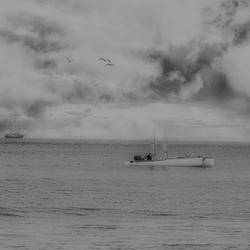 Ship ahoy ...........