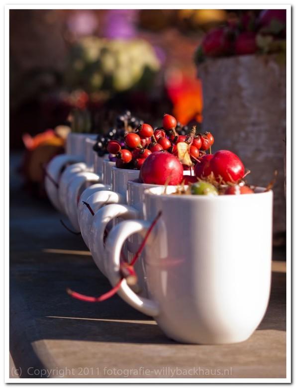 Apple in a cup - Appels in bekers en meer in de tuinen van Appeltern