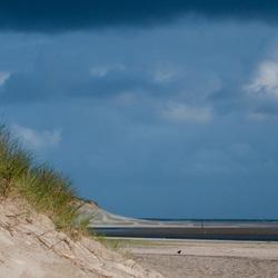 Duinen, Texel