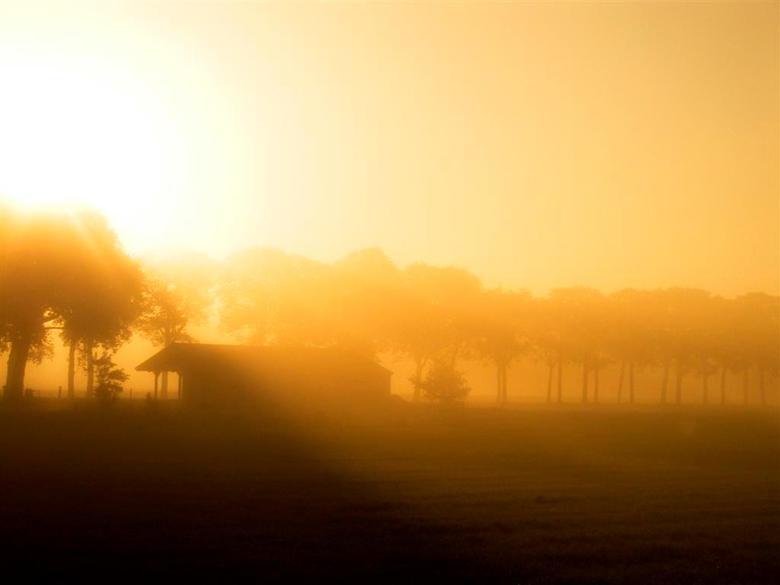 De vroege ochtend - Foto genomen rond 6 uur 's ochtends toen de zon nog verscholen ging achter een dikke laag mist.