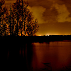 Westland by Night