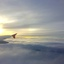 Vliegen 1