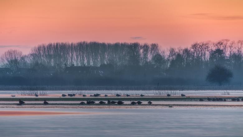 IJskoud langs de IJssel - Afgelopen woensdag zijn we met een groep fotografen naar de IJssel geweest om onder andere het blauwe uurtje en zonsopkomst