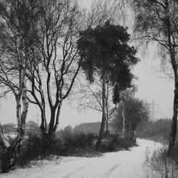 Sfeervol winterbeeld