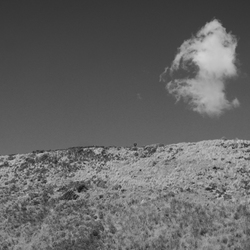 Zeeland - Duinen
