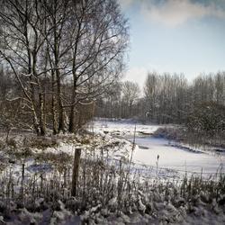 Sneeuw in de Dommelvallei