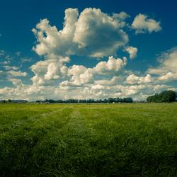 Gras en lucht