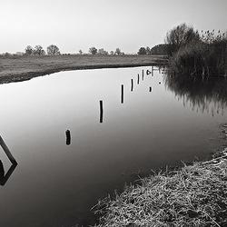 Uiterwaarde van de IJssel