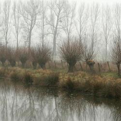 beetje mist