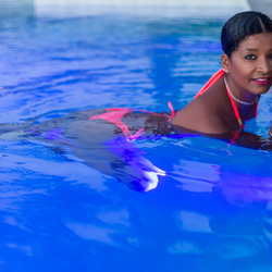 Miss Abina Curacao L (8 van 1)