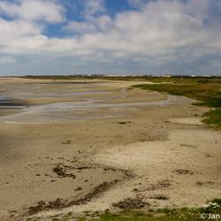 Groene strand Terschelling