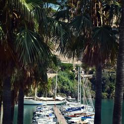 Monaco Old Harbour