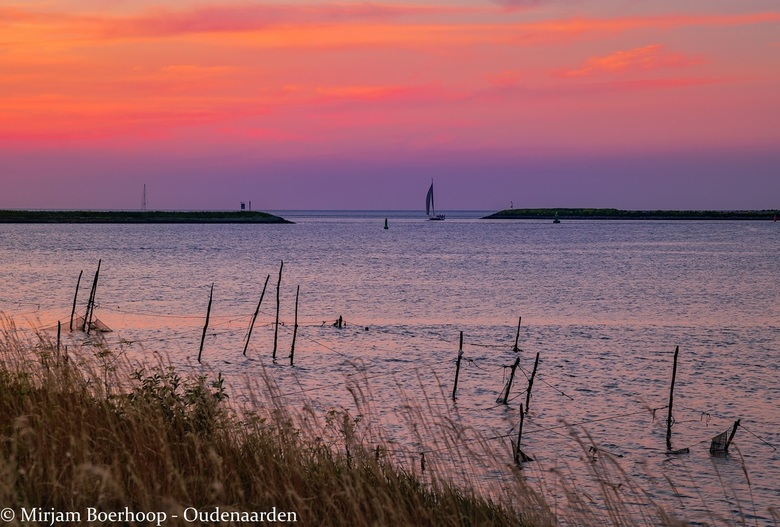 Saling to the sunset -