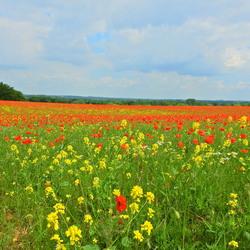 Mooi Zuid Limburg