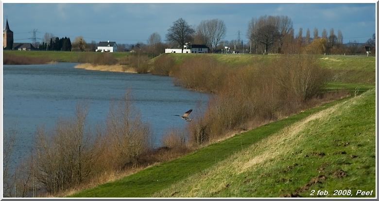 De strang van Dodenwaard - Een archief foto uit 2008.