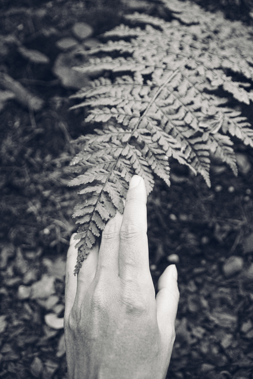 Touch of nature - Contact.