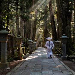 Begraafplaats Koyasan Japan