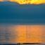 Evening Sun, Blakenberge.