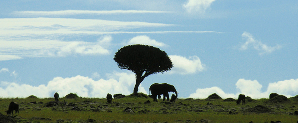 Horizon in Kenia -