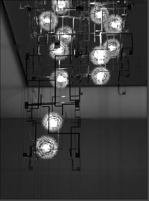 Pluizen op LED's..  - AMSTERDAM - Stedelijk Museum - Lonneke Gordijn.(Studio Drift)<br /> <br /> Paardenbloemen vertonen een ongekende levensdrang o