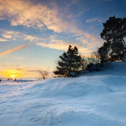 kootwijkerzand sneeuw5