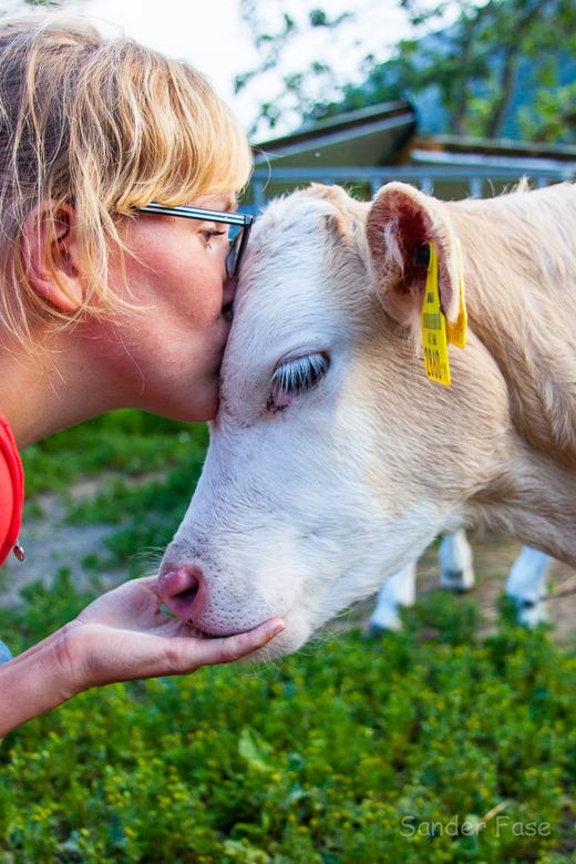 DIERbaar - Een mooi moment waarin de dierbaarheid van mens en dier voor elkaar duidelijk naar boven komt.