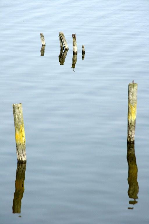 Waterpeil - Ik ben vaak gefacineerd van spiegeling in het water.