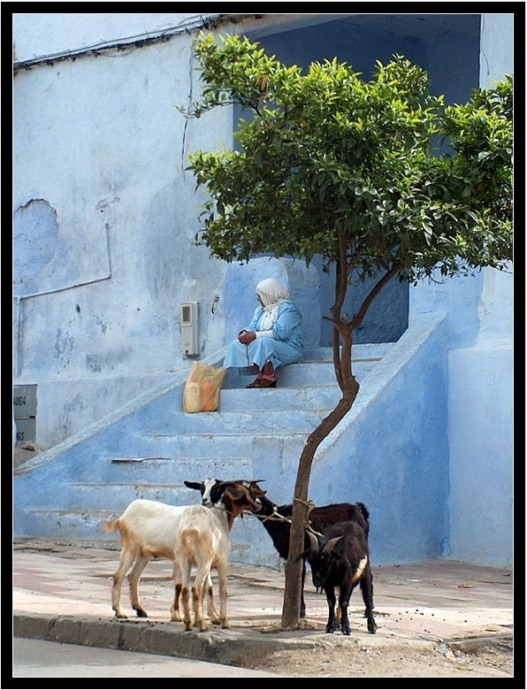 blauw - Schilderachtige straatplaat in het blauwgeschilderde dorpje Chefchouen in het noorden van Marokko.