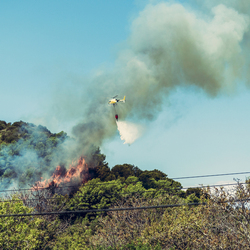 Bosbrand op Mallorca