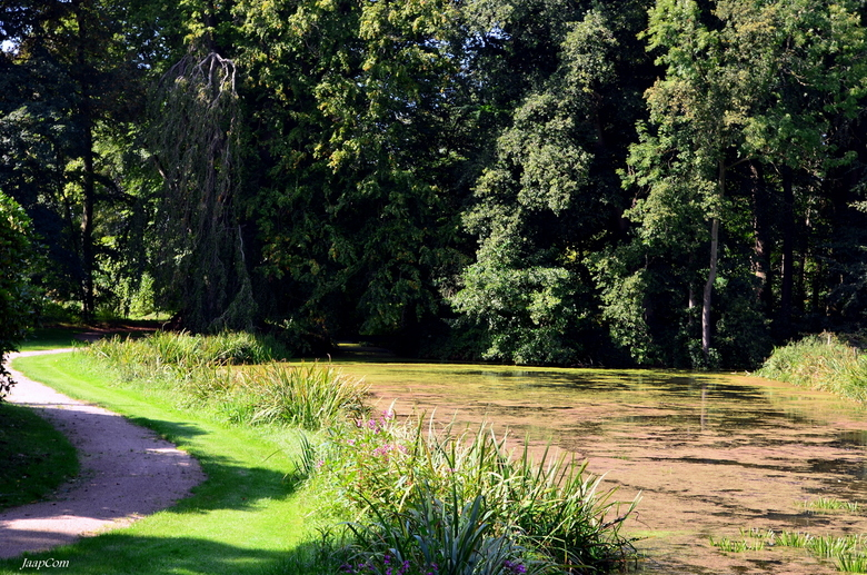 Landgoed Schouwenburg - Deze foto genomen op het landgoed Schouwenburg plaats 't Harde op de veluwe gemeente Elburg !