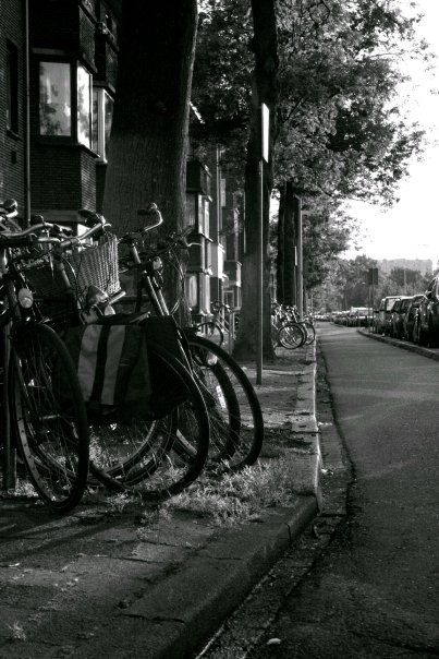 Bikes in the Hague -